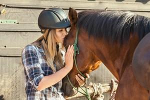 Auch eine Krankenversicherung oder Lebensversicherung kann für Pferde abgeschlossen werden.