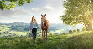 Mit einer Pferdehalterhaftpflichtversicherung versichern sie sich gegen berechtigte und unberechtigte Schadensersatzforderungen (Personen-, Sach- und Vermögensschäden von dritten Personen.