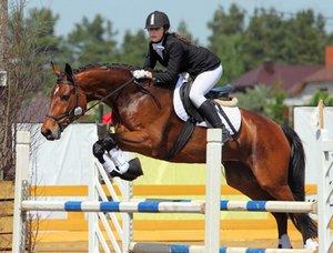 Auch das Rennpferd muss bei einem Wettbewerb durch eine Pferdehalterhaftpflicht abgesichert sein.